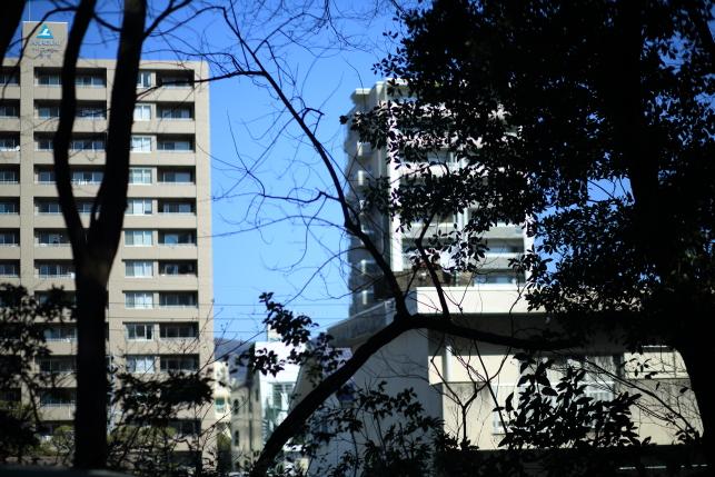 0222yamauchi02.JPG