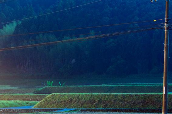 0525moonlight_4.jpg