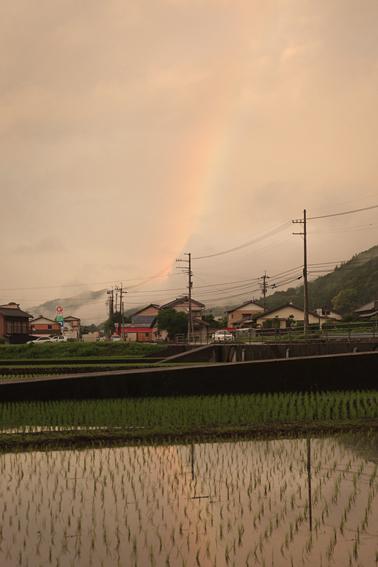 0605rainbow.jpg