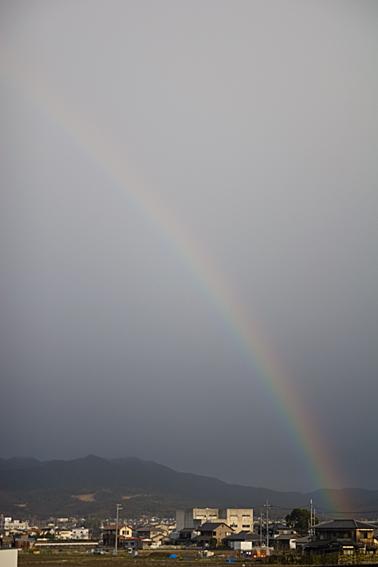 070228rainbow.jpg