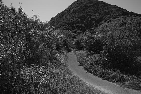 0814kashiwajima.jpg