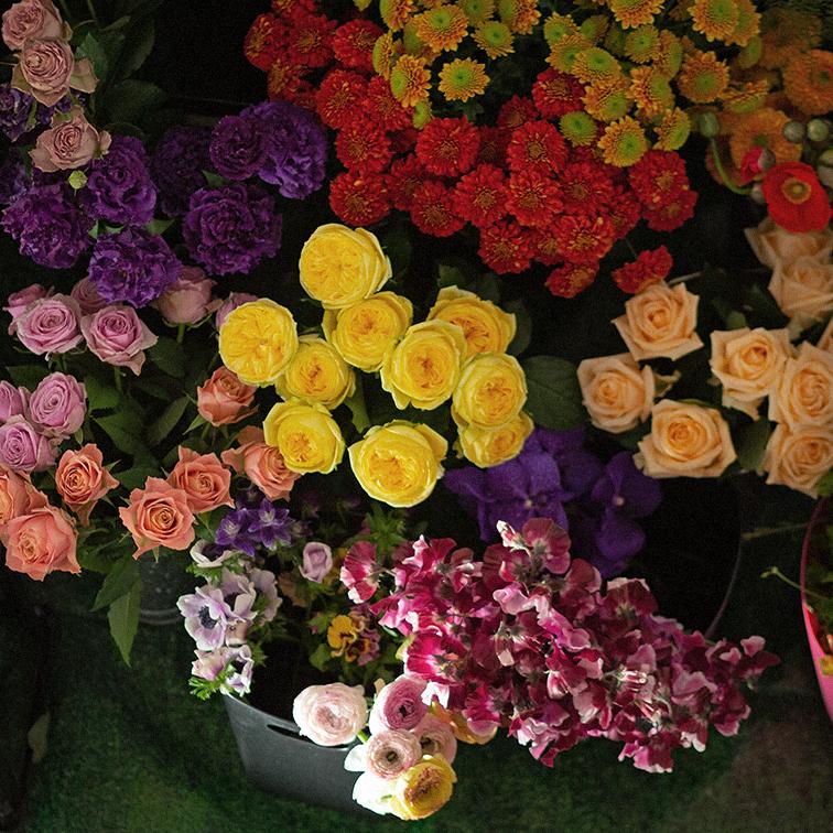 1003flowers.jpg